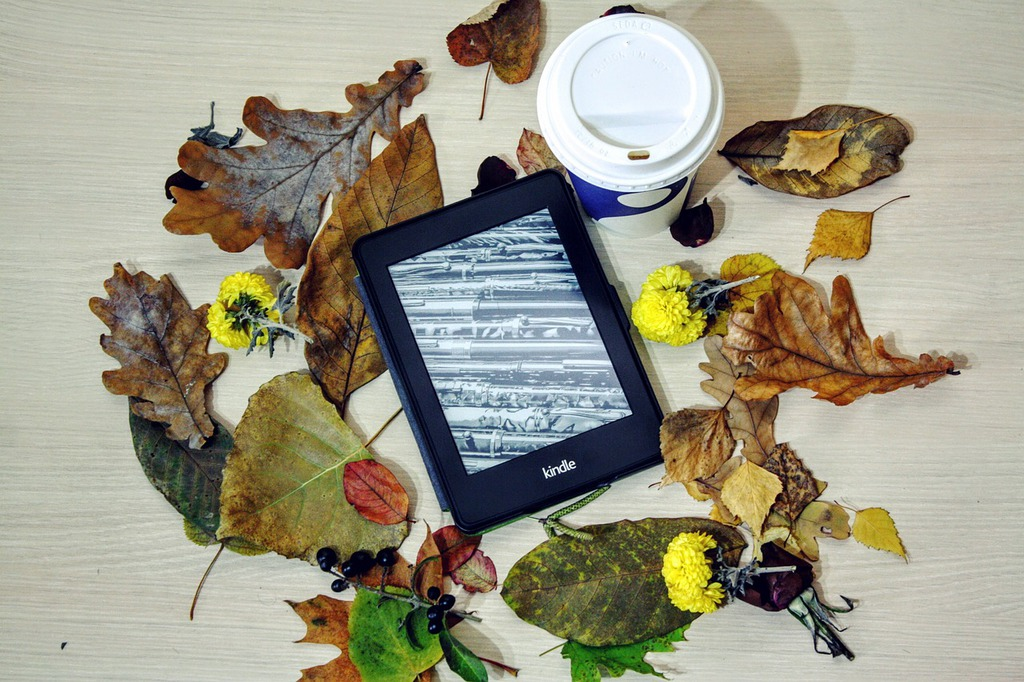 Stilleben mit Ebook-Reader