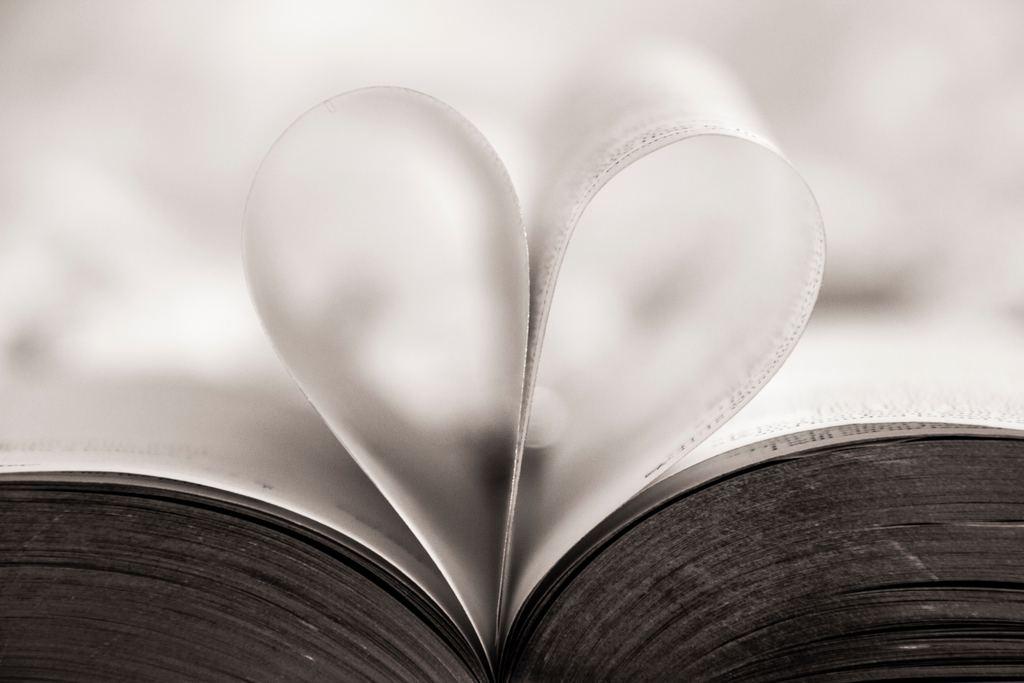 Buch Herz